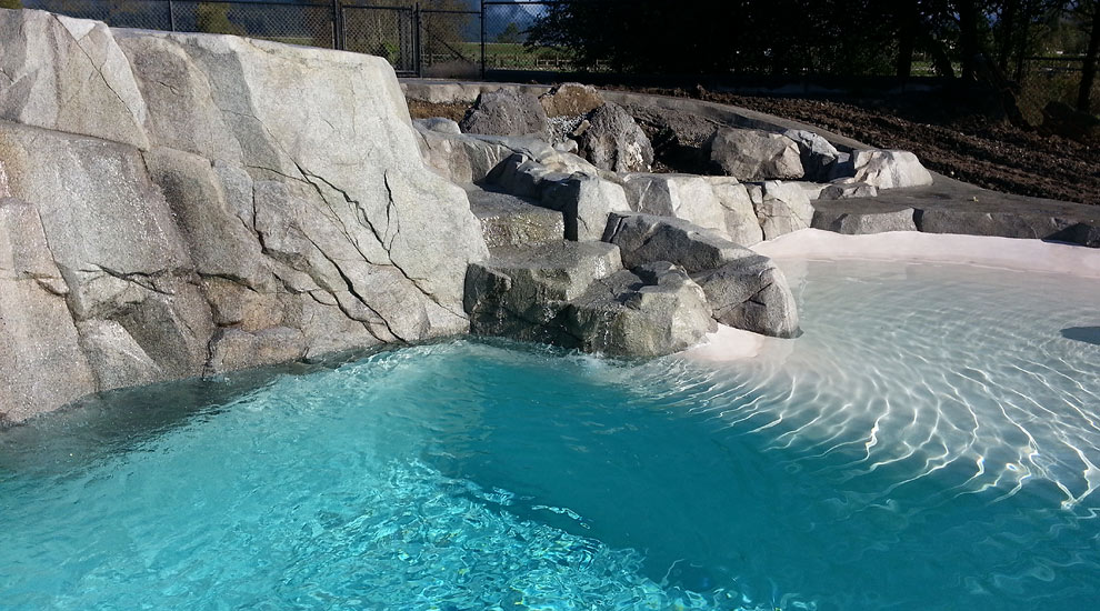 Vancouver Custom Swimming Pool Projects